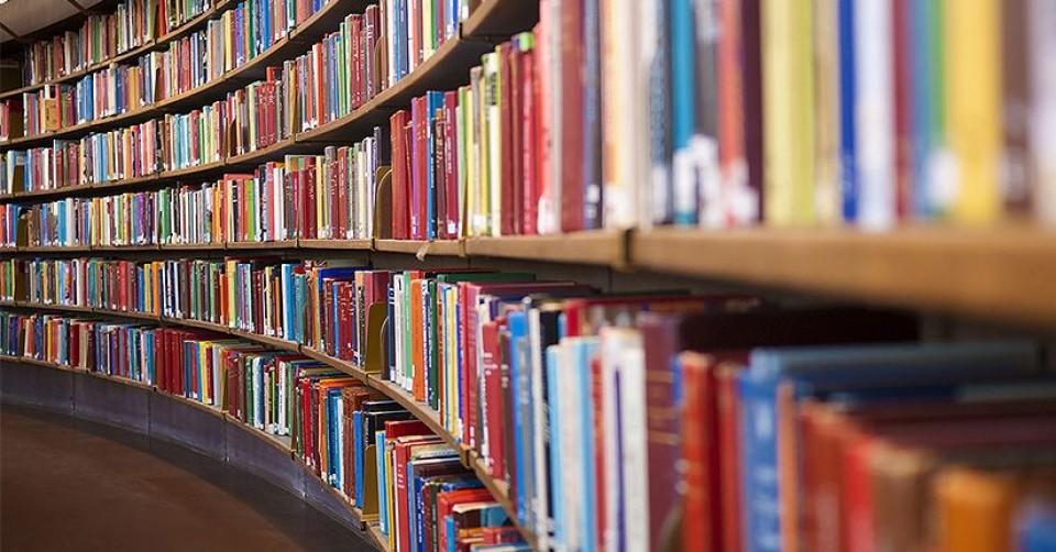 Syllabuses of department disciplines